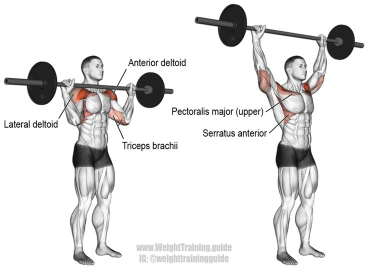 17 Best images about Exercises - Shoulders on Pinterest ... Dumbbell Overhead Press