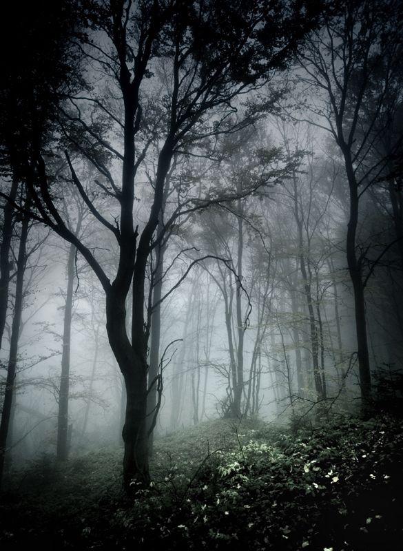 dark and ominous