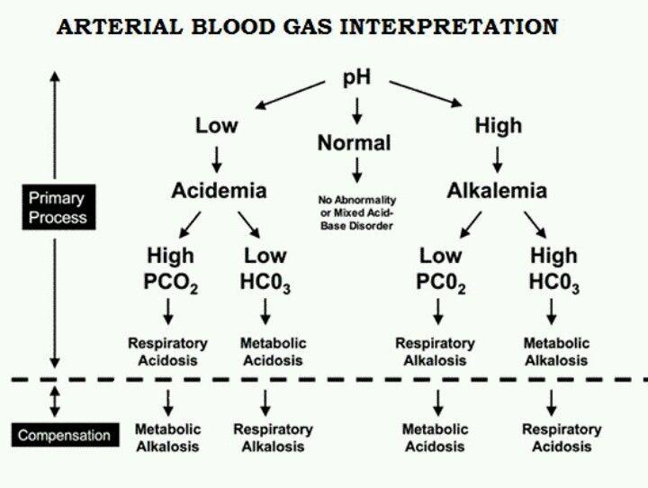 Best 25+ Arterial blood gas ideas on Pinterest