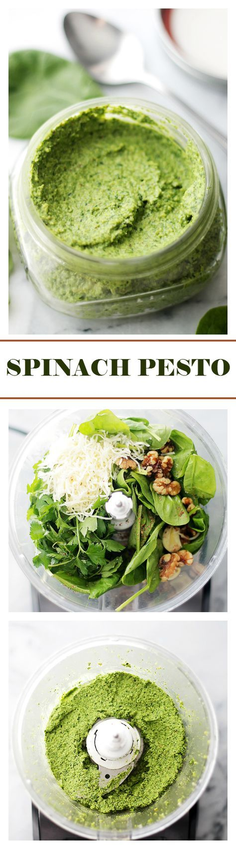 Spinach Pesto - Made with just a handful of everyday ingredients including fresh spinach and parmesan cheese, this healthy sauce goes great with pasta, chicken, veggies, and so much more! Get the recipe on diethood.com