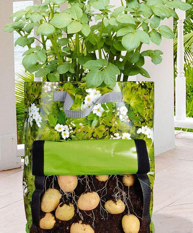 Urban Gardening Kartoffel Pflanztasche gartenprojekt Pinterest - pflanzen topfen kubeln terrasse