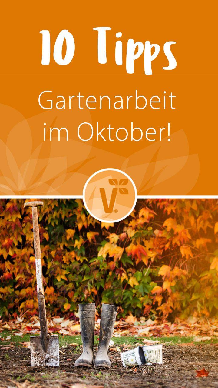 Gartenarbeit  im Oktober!