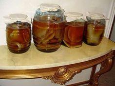 Как запросто вырастить чайный гриб