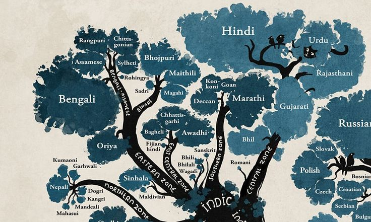 Did you know that most of the different languages we speak today can actually be placed in only a couple of groups by their origin? This is what illustrator Minna Sundberg has captured in an elegant infographic of a linguistic tree which reveals some fascinating links between different tongues.
