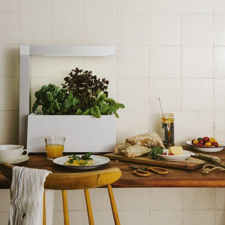 Mis au point par le designer Mikael Ericsson, ce potager d'intérieur accueillera toute l'année vos plantes aromatiques et en prendra soin. Intelligente, écologique et peu énergivore, cette culture sous lampe se veut décidément dans l'ère du temps. Vous pouvez placer jusqu'à 6 plantes dans le pot.
