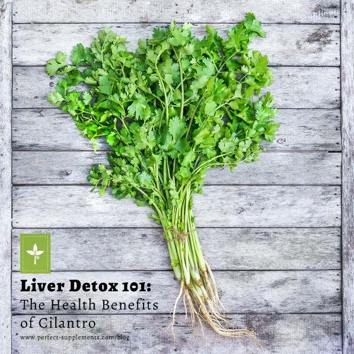 Liver Detox 101: The Health Benefits of Cilantro #Health #Detox #Superfoods