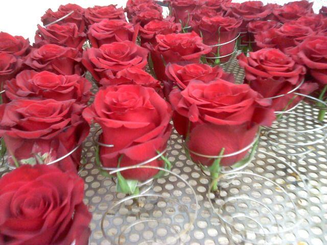 Capacitación en Preservación de Flores  de Exportación (venta de Know How). - Otras Ventas - Todo Ecuador