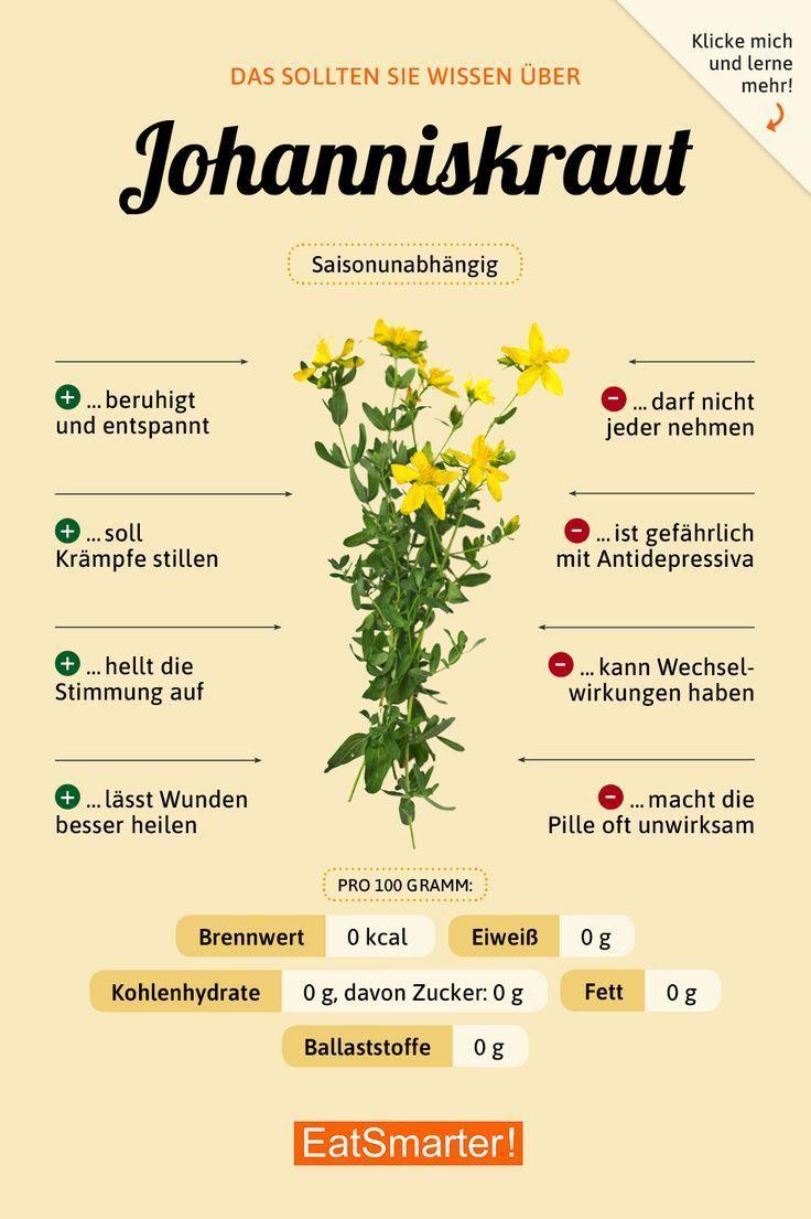 Johanniskraut  #johanniskraut
