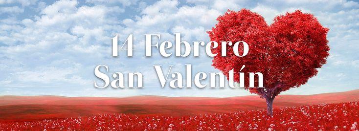 14 de Febrero San Valentín  Dia de los Enamorados    Las flores pueden ser las letras de emociones y sentimientos,  quizás esa sea la razón por la que han perdurado en el tiempo a lo largo de toda la historia.   Escribe