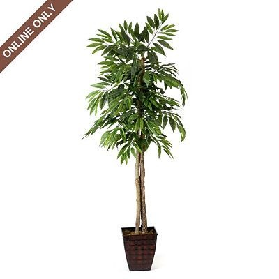 Artificial Mango Tree, 6 ft. by Kirkland's $70