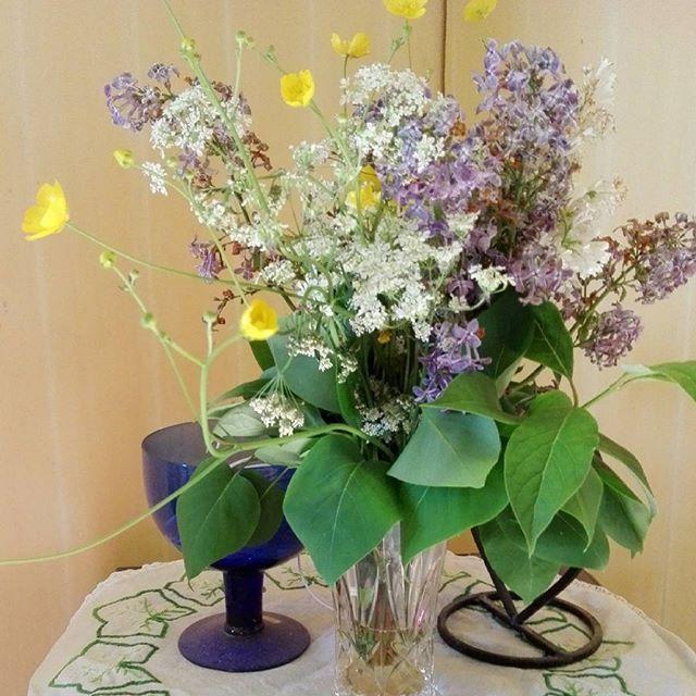 God morgon🌸💛☀🍃Sköna Söndag💕Ganska soligt idag med☀😄🌸Ha en härlig o skön Söndag🍀🌼💛 #2juli #skönasöndag #blommor #sommar #hemmaigränlandet