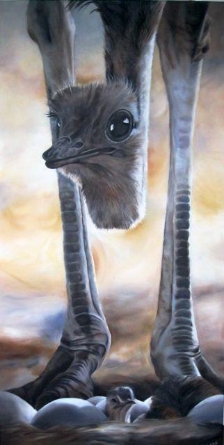 struisvogel met kuiken