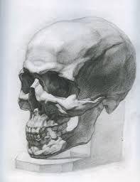 Картинки по запросу череп рисунок