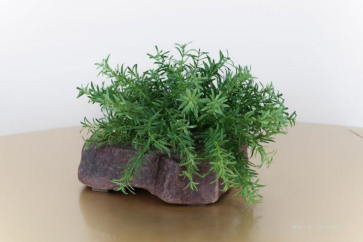 Бонсай декоративный на камне, H20Х25см.