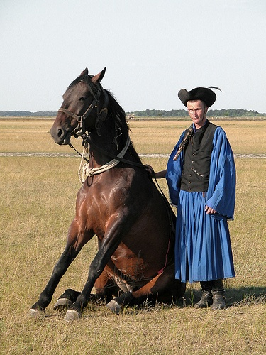 Nagypapa trained his horse to do this in Hungary! (Wrangler and his sitting horse, Hungary)