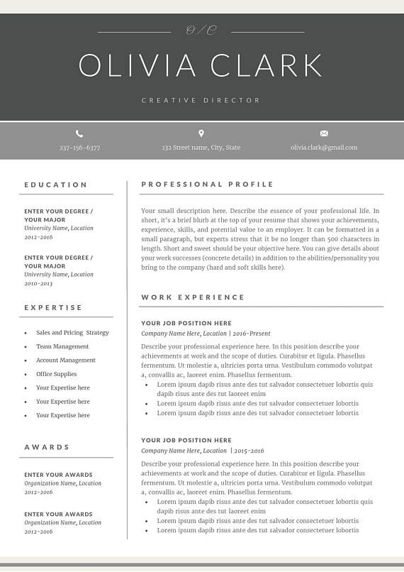 SALE Professional Resume Template CV Template Cover Letter