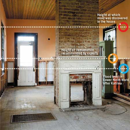 how to clean a flooded basement mold