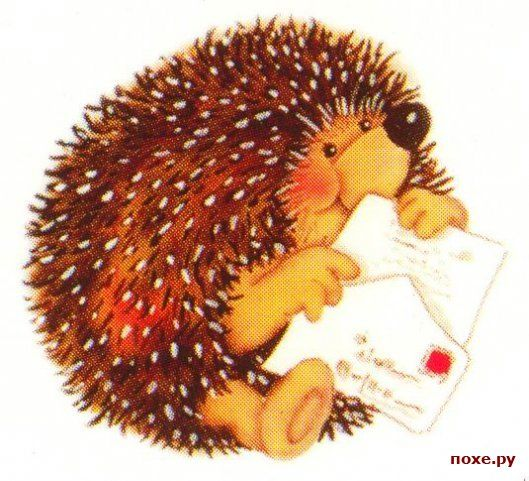 Hedgehog's day