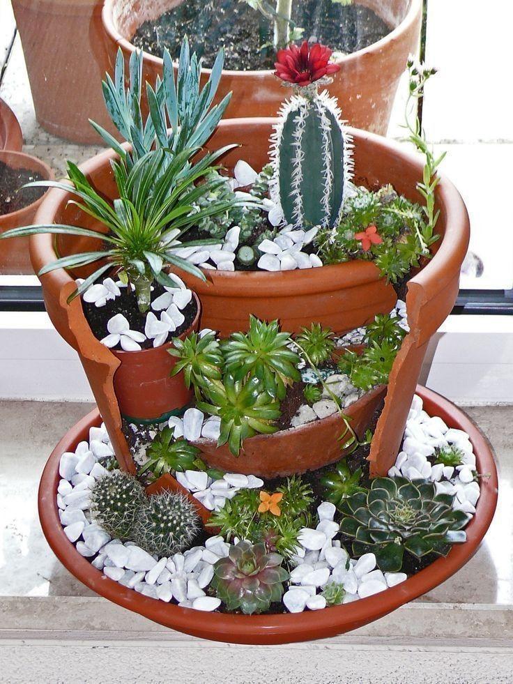 Crea Bellos Mini Jardines En Macetas De Barro Jardinería En Macetas Macetas Originales Mini Jardines En Macetas