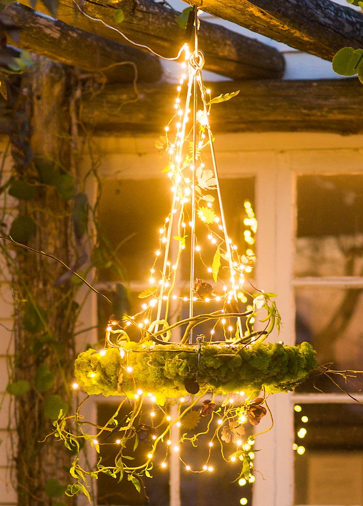 Moss chandelier  DIY idea  DIY  Crafts  String lights