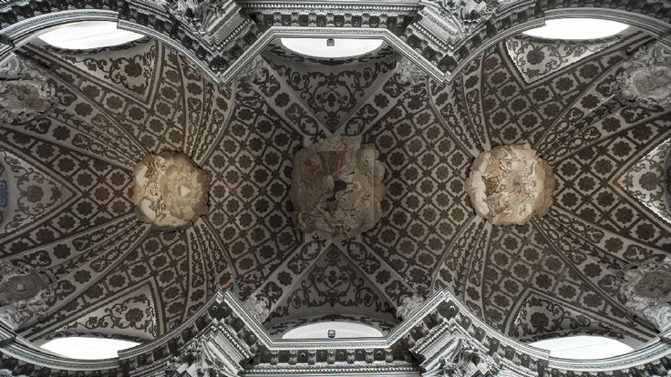 SFN/ Turin/ Guarini