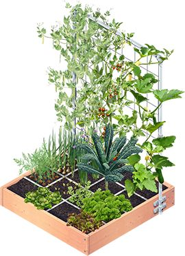 Een Makkelijke Moestuin voor iedereen - Makkelijke Moestuin (square foot gardening)