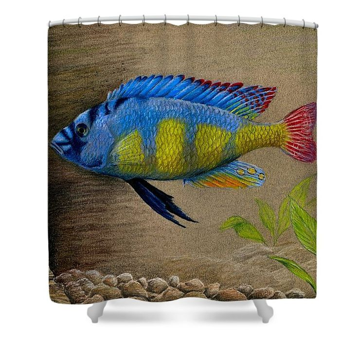 """Victorian Cichlid colorful fish shower curtain by Rebecca Wang. Our shower curtains are made from 100% polyester fabric and include 12 holes at the top of the curtain for hanging from your own shower curtain rings.  The shower curtain is 71"""" wide by 74"""" tall."""