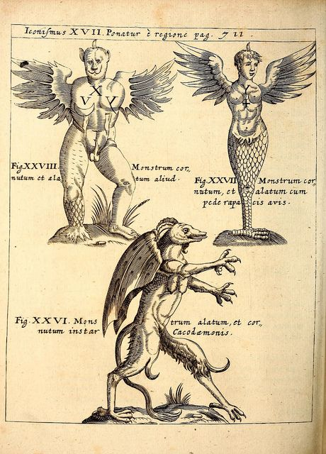 P. Gasparis Schotti, regis curtani ... Physica curiosa, sive, Mirabilia naturæ et artis libris XII. comprehensa :. Herbipoli :Sumptibus Johannis Andreæ Endteri & Wolfgangi Jun. hæredum, excudebat Jobus Hertz, 1662.