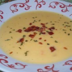 Wisconsin Cheese Soup | Helpful Hints | SampleStorm
