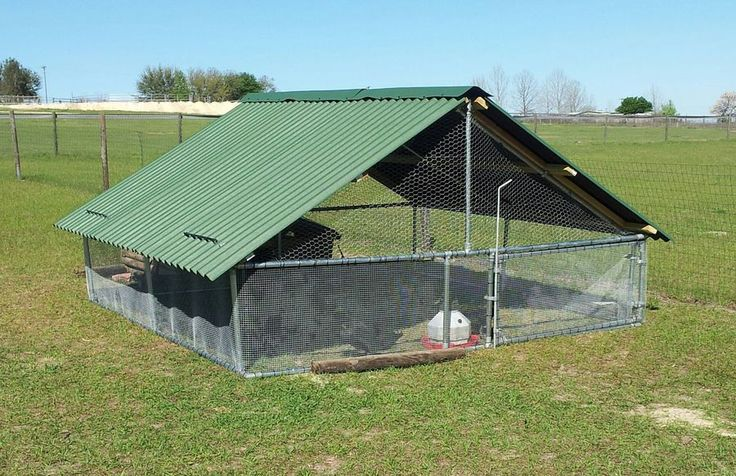 Top 19 ideas about animal shelters with ondura roof on for Building a duck house shelter