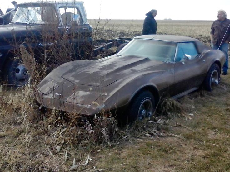 C3 Corvette in a field