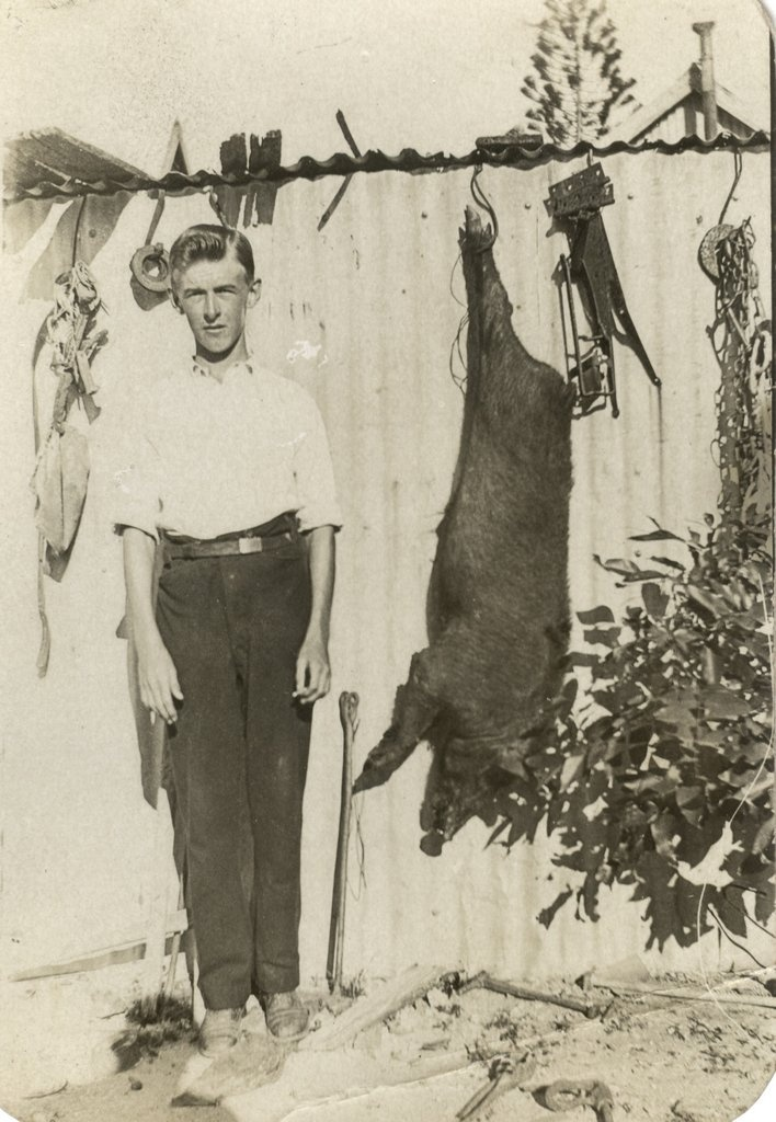 Ca. 1930 Herbert Charles COLMAN with wild pig he shot at Cooktown.