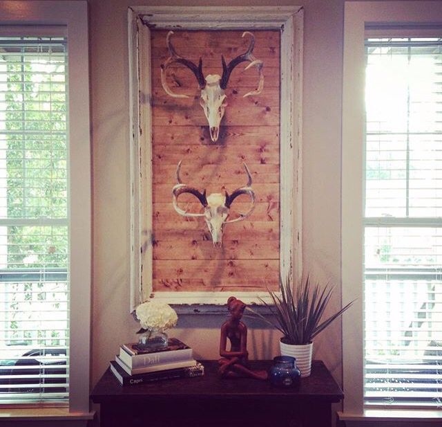 Best 25 deer skull decor ideas on pinterest deer skulls for Animals decoration games
