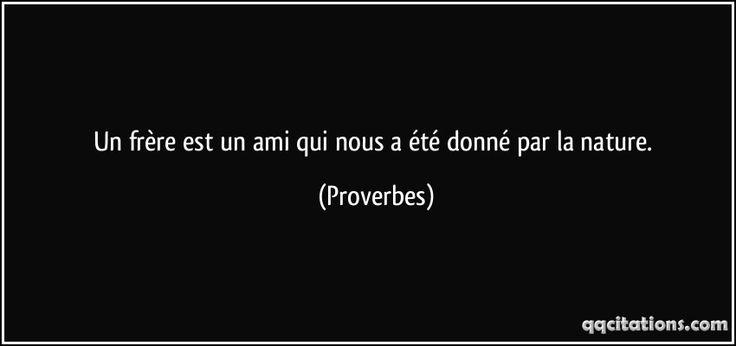Un frère est un ami qui nous a été donné par la nature. (Proverbes) #citations #Proverbes