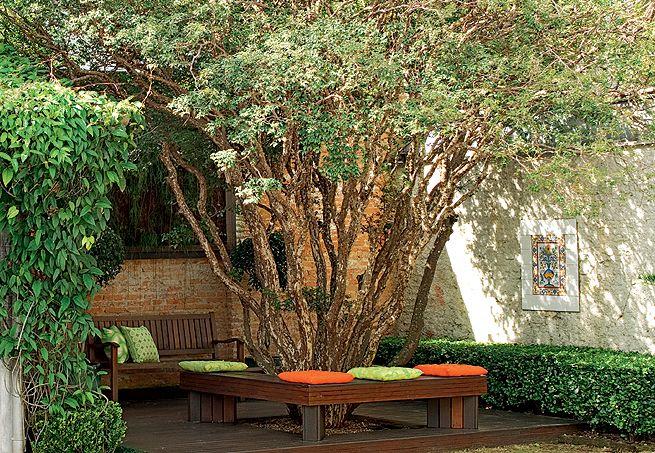 A decisão pela compra do terreno foi tomada após a moradora avistar esta jabuticabeira. A árvore ganhou a companhia de um cantinho romântico