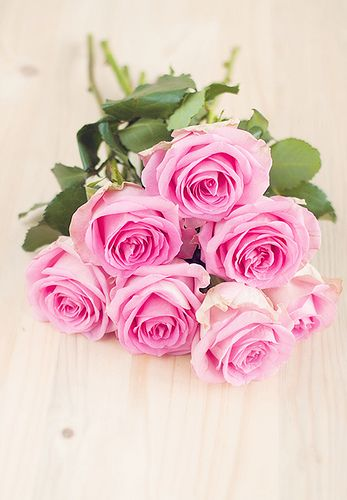 Roses... So pretty!  http://www.planetgoldilocks.com/flowers.htm