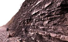 Mary Anning - Cliff wall with layers of rock next to a rocky beach