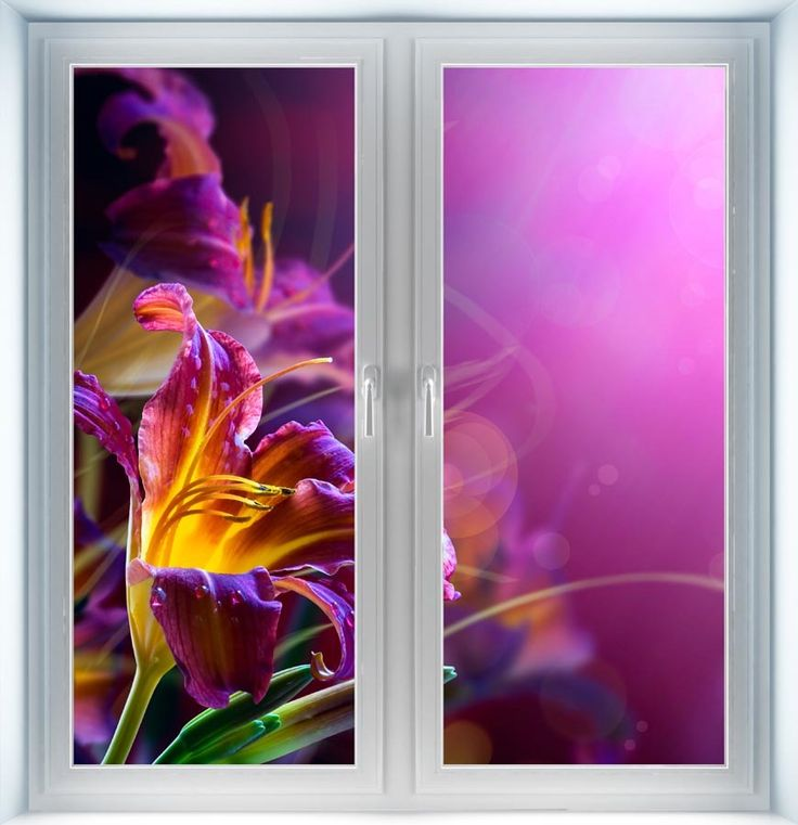 Majestic Wall Art - Flowers on Red Background Instant Window, $44.00 (http://www.majesticwallart.com/instant-windows/flowers-on-red-background-instant-window)