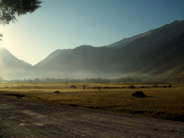 Gurez: The Unexplored Valley of Kashmir #Trips #Turkey #Road #travel