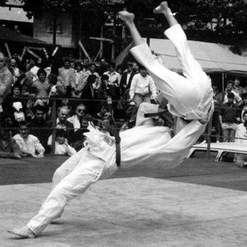 """The tatami mats at the London 2012 Olympic Judo competition were made of high density polyurethane foam covered on the upper side with a vinyl upholstery and underside with an antiskid finish. Why? To """"contribute to … safe play""""."""