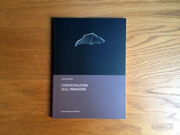 Luca Panaro, Conversazioni sull'immagine, Danilo Montanari Editore, 2013
