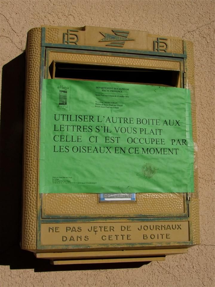 """French for ever ^^ """"Please, use the other mailbox, this one is used by birds for the moment"""" #FranceFraternity"""
