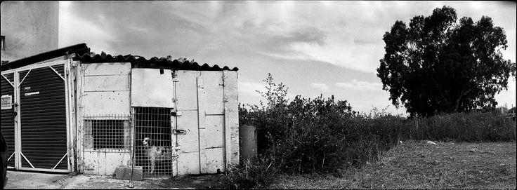 PANAYOTIS KASIMIS • PHOTOGRAPHER