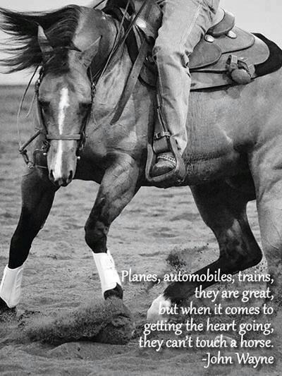 Quote by John Wayne