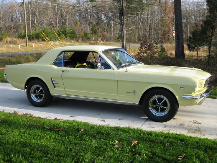 66 mustang gt 289 hypo   1966 Mustang Coupe 289 4B Auto - Springtime Yellow-img_2349.jpg
