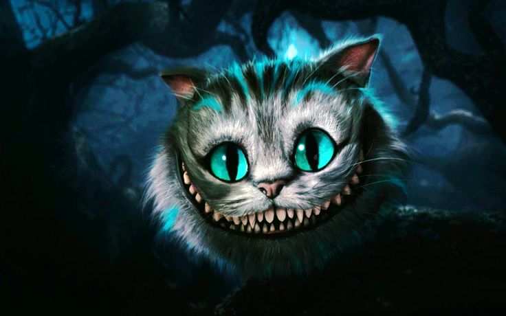 The Cheshire Cat from Alice in Wonderland by Tim Burton is a friendly character, who is very cute.
