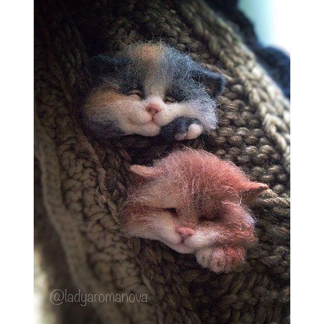 котоброшки #брошь #брошьручнойработы #брошьизшерсти #котоброшь #brooch #needlefelting #woolbrooch #catstagram #catsofinstagram #cats #love #woolfelting #handmadebrooch #handmade #валяние