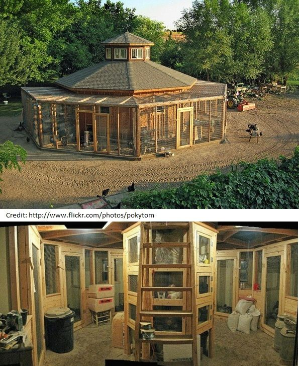Dream Chicken Coop - Amazing! My girls (hens) would think it was a mansion! This is great!