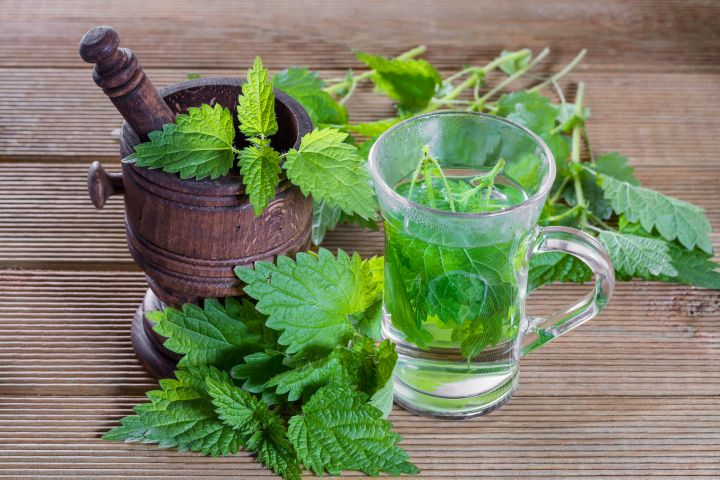 5 Nettle Recipes for Gorgeous Hair, Skin & Nails | Body Enlightenment Blog: Inspiration and support for women daring to live a life they love.