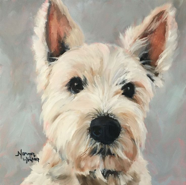 Norma Wilson Original Oil West Highland Terrier Pet retrato perro pintura arte # …